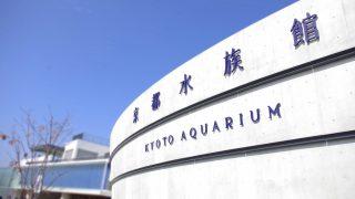 【200円割引】京都水族館の入場料金を割引にするクーポン情報