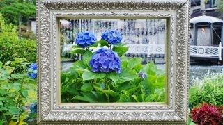 【300円割引】箱根ガラスの森美術館 割引クーポン情報