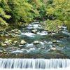 【入浴無料あり】塔ノ沢温泉 一の湯本館 日帰り温泉  割引クーポン情報